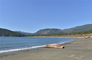 Photo 45: 16925 Tsonoqua Dr in Port Renfrew: Sk Port Renfrew Single Family Detached for sale (Sooke)  : MLS®# 837813