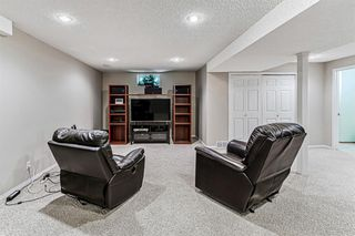 Photo 30: 139 Appletree Close SE in Calgary: Applewood Park Detached for sale : MLS®# A1022936