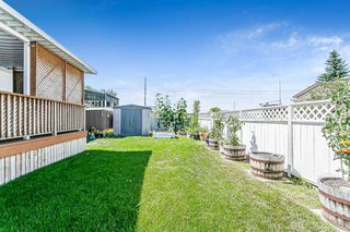Photo 3: 139 Appletree Close SE in Calgary: Applewood Park Detached for sale : MLS®# A1022936