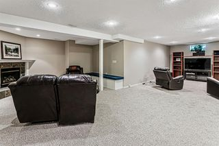 Photo 26: 139 Appletree Close SE in Calgary: Applewood Park Detached for sale : MLS®# A1022936