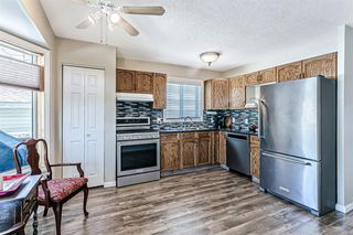 Photo 13: 139 Appletree Close SE in Calgary: Applewood Park Detached for sale : MLS®# A1022936
