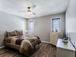 Photo 23: 139 Appletree Close SE in Calgary: Applewood Park Detached for sale : MLS®# A1022936