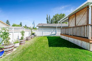Photo 4: 139 Appletree Close SE in Calgary: Applewood Park Detached for sale : MLS®# A1022936