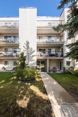 Photo 6: 202 9810 178 Street in Edmonton: Zone 20 Condo for sale : MLS®# E4210080
