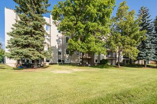 Photo 46: 202 9810 178 Street in Edmonton: Zone 20 Condo for sale : MLS®# E4210080