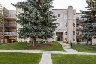 Photo 4: 202 9810 178 Street in Edmonton: Zone 20 Condo for sale : MLS®# E4210080