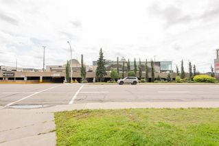 Photo 50: 202 9810 178 Street in Edmonton: Zone 20 Condo for sale : MLS®# E4210080