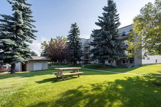 Photo 3: 202 9810 178 Street in Edmonton: Zone 20 Condo for sale : MLS®# E4210080