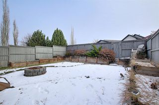 Photo 20: 304 Cranfield Gardens SE in Calgary: Cranston Detached for sale : MLS®# A1050005