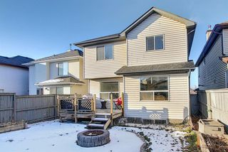 Photo 18: 304 Cranfield Gardens SE in Calgary: Cranston Detached for sale : MLS®# A1050005
