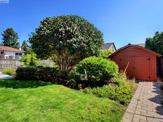 Photo 18: 4381 Shelbourne St in VICTORIA: SE Mt Doug House for sale (Saanich East)  : MLS®# 822185