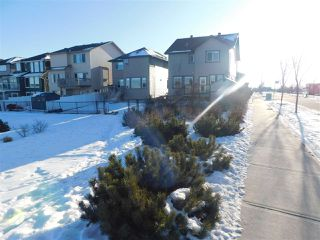 Photo 3: 12268 168 Avenue in Edmonton: Zone 27 House for sale : MLS®# E4183910