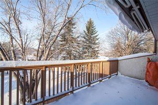 Photo 19: 1 183 Hamilton Avenue in Winnipeg: Crestview Condominium for sale (5H)  : MLS®# 202001652