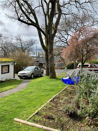Photo 2: 3025 Jackson Street in VICTORIA: Vi Mayfair Single Family Detached for sale (Victoria)  : MLS®# 423625