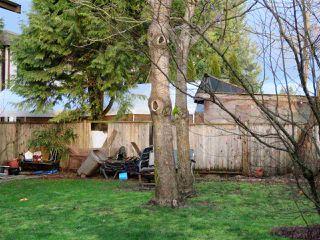 Photo 10: 21190 122 Avenue in Maple Ridge: Northwest Maple Ridge House for sale : MLS®# R2460647