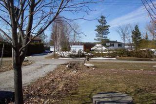Photo 3: 19 Eldonia Beach Rd in Kawartha L: House (Bungalow) for sale (X22: ARGYLE)  : MLS®# X1102613