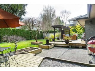 """Photo 17: 4644 220 Street in Langley: Murrayville House for sale in """"Upper Murrayville"""" : MLS®# R2447526"""