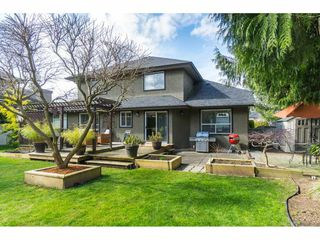 """Photo 18: 4644 220 Street in Langley: Murrayville House for sale in """"Upper Murrayville"""" : MLS®# R2447526"""