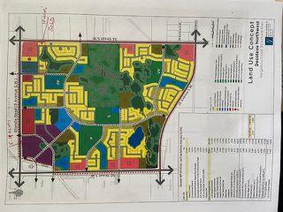 Photo 4: 4565 ELLERSLIE Road in Edmonton: Zone 53 House for sale : MLS®# E4204161