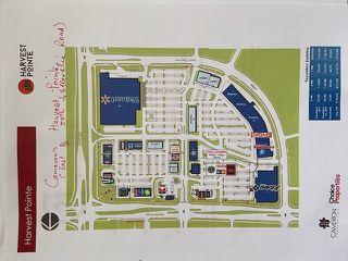 Photo 11: 4565 ELLERSLIE Road in Edmonton: Zone 53 House for sale : MLS®# E4204161