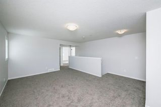 Photo 28: 89 Creekside Way SW in Calgary: C-168 Detached for sale : MLS®# A1013282