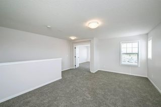 Photo 27: 89 Creekside Way SW in Calgary: C-168 Detached for sale : MLS®# A1013282