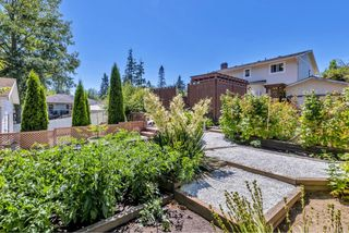 Photo 28: 2277 N French Rd in : Sk Broomhill Single Family Detached for sale (Sooke)  : MLS®# 850332