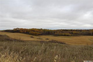 Photo 42: Smith Acreage in Willow Creek: Residential for sale (Willow Creek Rm No. 458)  : MLS®# SK828773