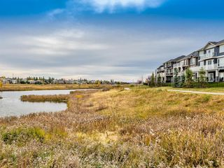 Photo 39: 128 Waterlily Cove: Chestermere Detached for sale : MLS®# A1041539