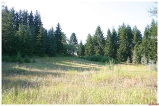 Photo 38: 4921 SE 10 AVE in Salmon Arm: South Canoe House for sale : MLS®# 10076943