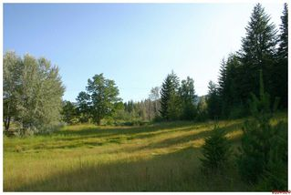 Photo 68: 4921 SE 10 AVE in Salmon Arm: South Canoe House for sale : MLS®# 10076943