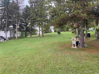 Photo 11: 14 Lake Street: Rural Lac Ste. Anne County Rural Land/Vacant Lot for sale : MLS®# E4173483