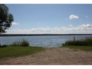 Photo 25: 14 Lake Street: Rural Lac Ste. Anne County Rural Land/Vacant Lot for sale : MLS®# E4173483