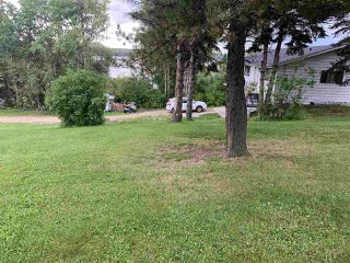 Photo 7: 14 Lake Street: Rural Lac Ste. Anne County Rural Land/Vacant Lot for sale : MLS®# E4173483