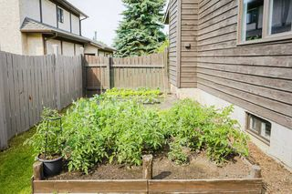 Photo 24: 243 RHATIGAN Road in Edmonton: Zone 14 House for sale : MLS®# E4175319
