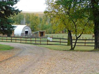 Photo 40: 56019 Rg Rd 230: Rural Sturgeon County House for sale : MLS®# E4186894