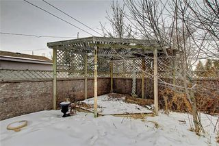 Photo 38: 283 QUEENSLAND Circle SE in Calgary: Queensland Detached for sale : MLS®# C4290754