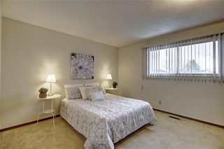 Photo 19: 283 QUEENSLAND Circle SE in Calgary: Queensland Detached for sale : MLS®# C4290754