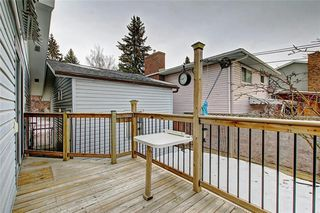 Photo 31: 283 QUEENSLAND Circle SE in Calgary: Queensland Detached for sale : MLS®# C4290754