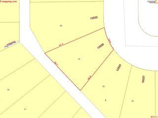 Photo 38: 13528 104 Street in Edmonton: Zone 01 House for sale : MLS®# E4197313