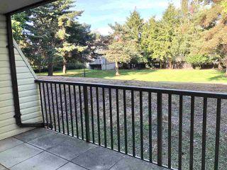 """Photo 23: 108 15288 100 Avenue in Surrey: Guildford Condo for sale in """"CEDAR GROVE"""" (North Surrey)  : MLS®# R2472138"""