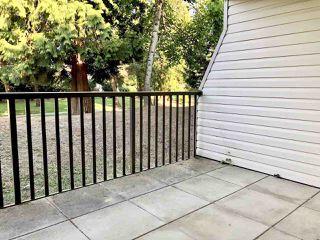 """Photo 24: 108 15288 100 Avenue in Surrey: Guildford Condo for sale in """"CEDAR GROVE"""" (North Surrey)  : MLS®# R2472138"""