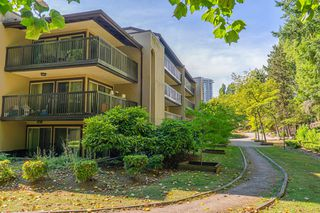"""Photo 37: 609 9867 MANCHESTER Drive in Burnaby: Cariboo Condo for sale in """"Barclay Woods"""" (Burnaby North)  : MLS®# R2488451"""