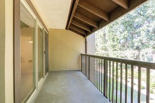 """Photo 22: 609 9867 MANCHESTER Drive in Burnaby: Cariboo Condo for sale in """"Barclay Woods"""" (Burnaby North)  : MLS®# R2488451"""
