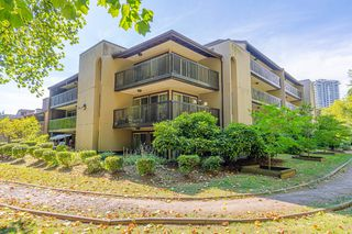 """Photo 1: 609 9867 MANCHESTER Drive in Burnaby: Cariboo Condo for sale in """"Barclay Woods"""" (Burnaby North)  : MLS®# R2488451"""