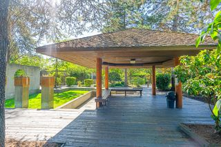 """Photo 32: 609 9867 MANCHESTER Drive in Burnaby: Cariboo Condo for sale in """"Barclay Woods"""" (Burnaby North)  : MLS®# R2488451"""