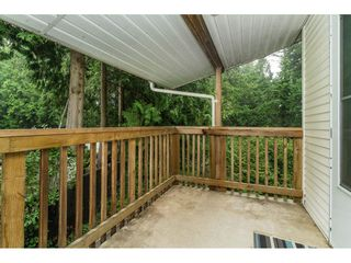 Photo 36: 19781 38A Avenue in Langley: Brookswood Langley House for sale : MLS®# R2499053