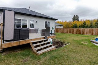 Photo 28: 4104 50 Street: Gibbons House for sale : MLS®# E4176393