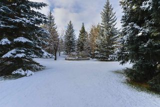 Photo 43: 51 25507 TWP RD 512 A: Rural Parkland County House for sale : MLS®# E4181295