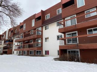 Photo 13: 311 10555 93 Street in Edmonton: Zone 13 Condo for sale : MLS®# E4186348